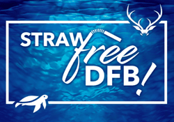 Straw Free DFB over a water background